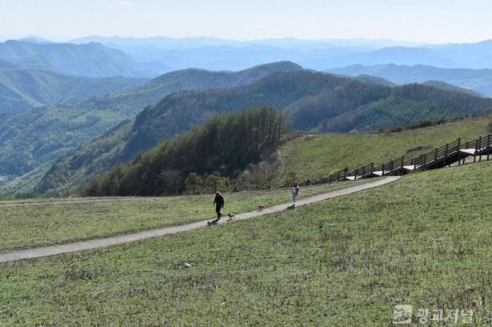 청옥산 오후의 산책.JPG