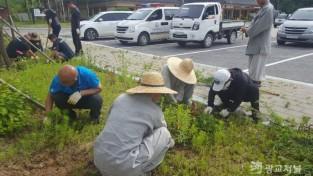 우리동네 아름다운 마을 꽃길 조성 (1).jpg