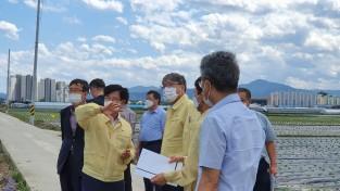 김한근,태풍 피해 및 고랭지배추 수급상황 점검
