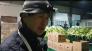 김장철의 꽃 절임배추, 시우뜰 박세환씨 농가를 찾아