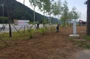 """평창군건강생활지원센터 """"우리동네 아름다운 마을 꽃길 조성"""""""
