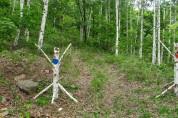 평창군, 미탄면 청옥산 자작나무숲 아기자기 포토존 조성
