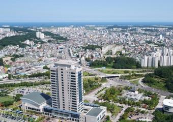 강릉시, 기차역서 설명절 전래놀이 · 전통공연으로 손님맞이