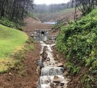 강릉시, 산불피해지는 산사태 피해지 ?